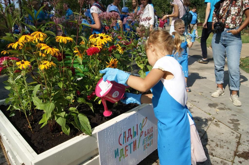 сады и дети