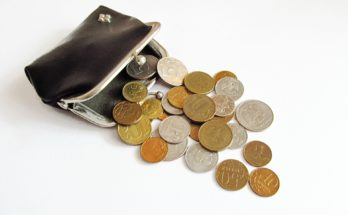 алименты с доходов