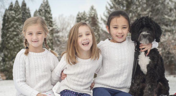 сколько детей в многодетной семье